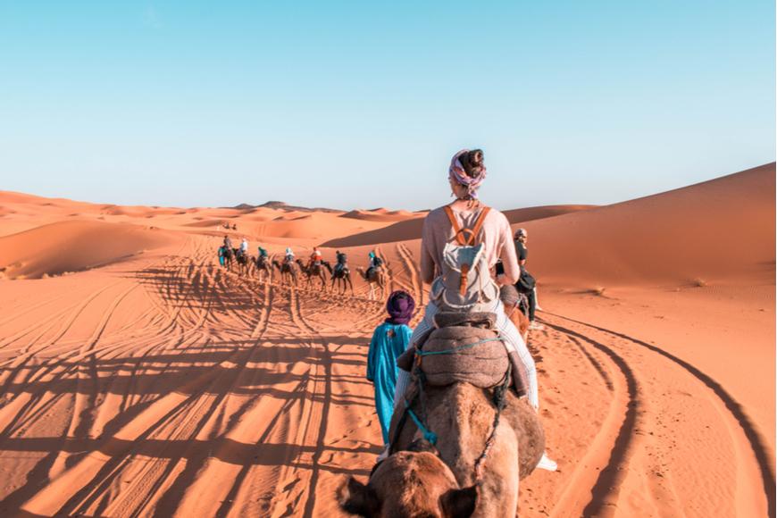 Río Camel de regreso Sahara Marruecos