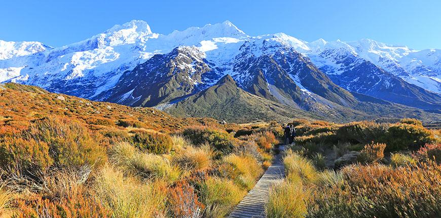 Monte Cook Nueva Zelanda.