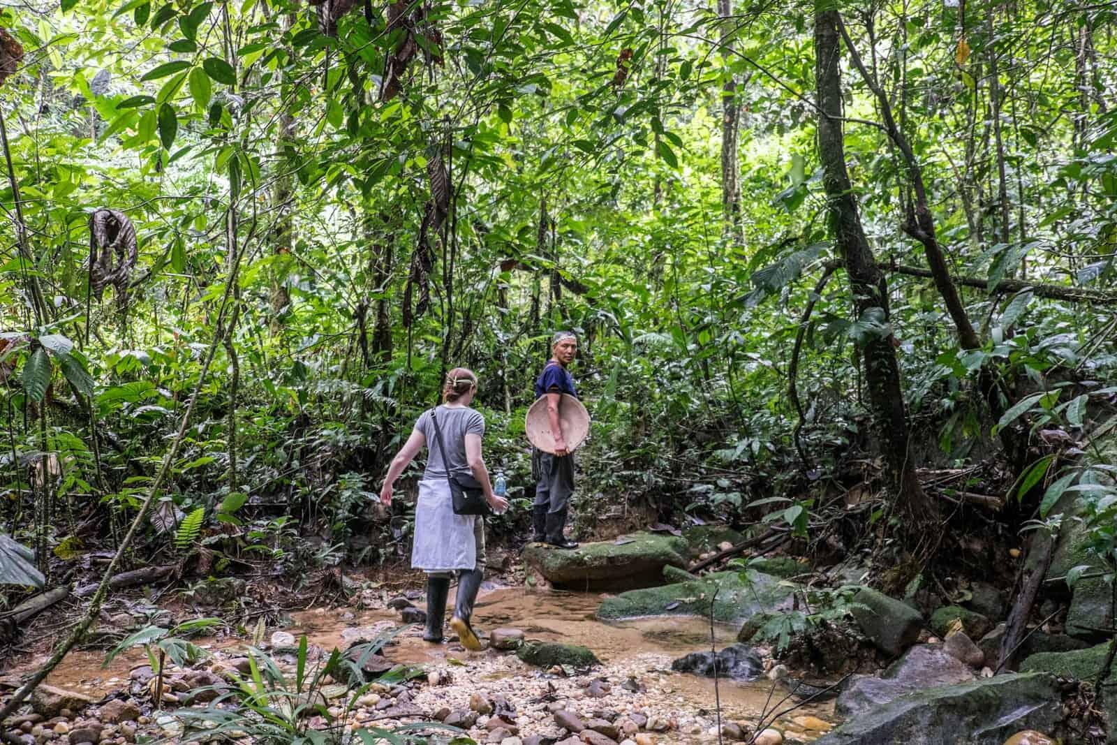 Excursión por la selva en Ecuador Excursión por la selva amazónica