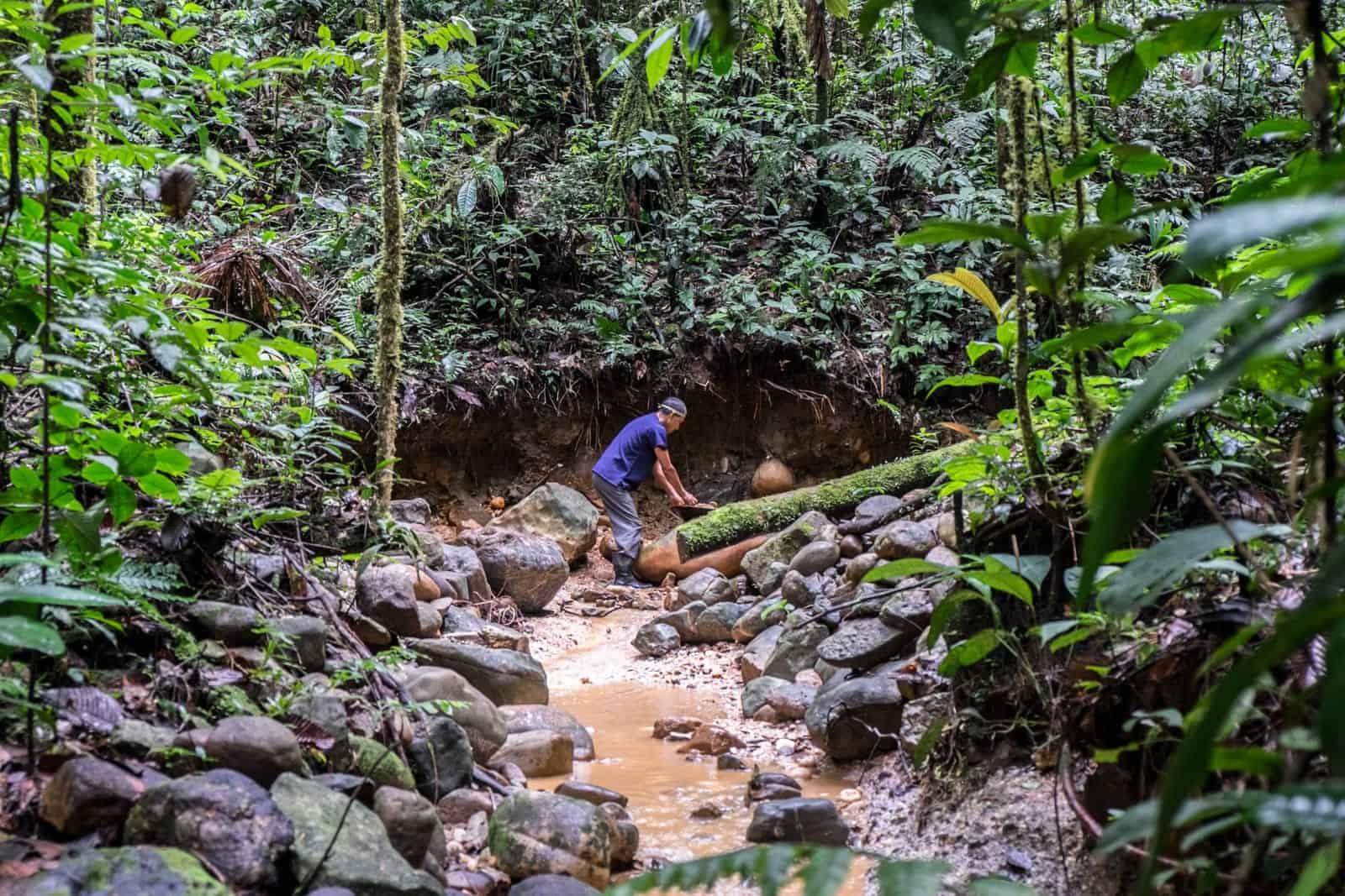 Visita a la selva amazónica ecuatoriana