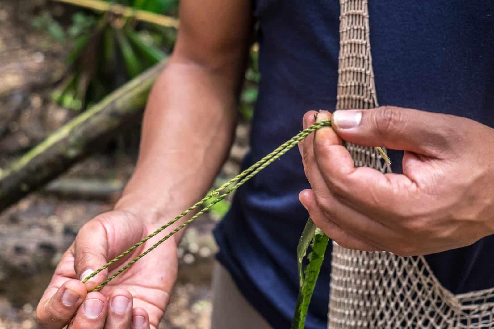 Supervivencia de las selvas tropicales de Ecuador con cuerda Ecuador [196590] Visita a la selva amazónica