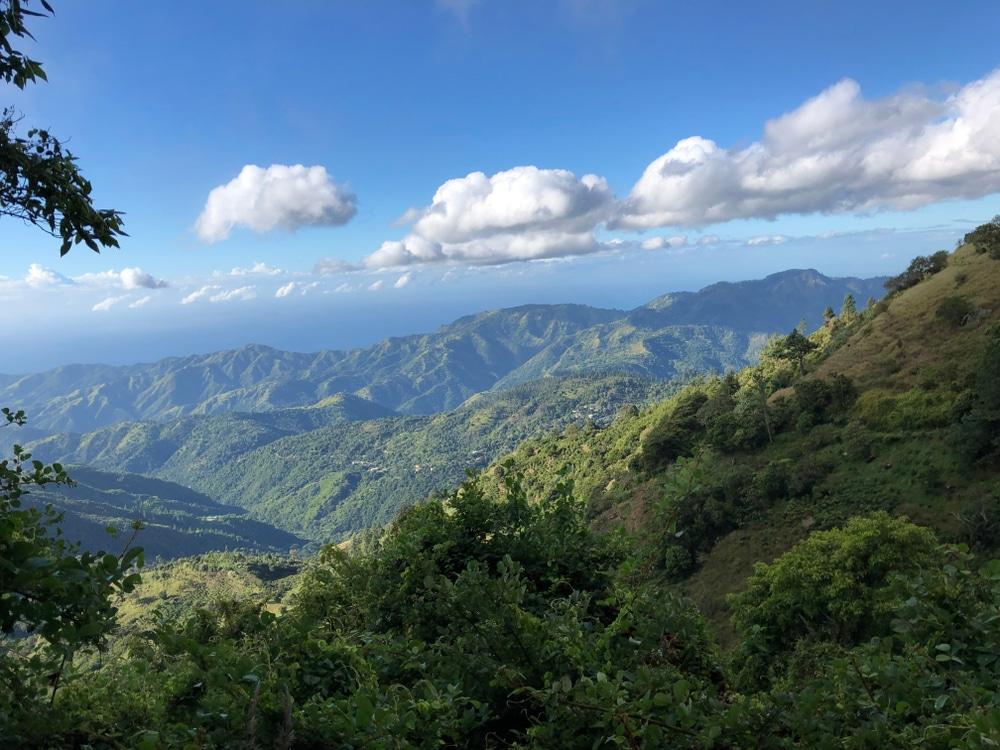 Montañas Azules, Jamaica