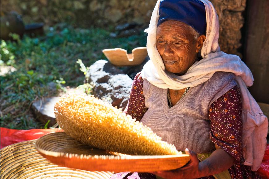 mujer arrojando maíz gondor etiopía.