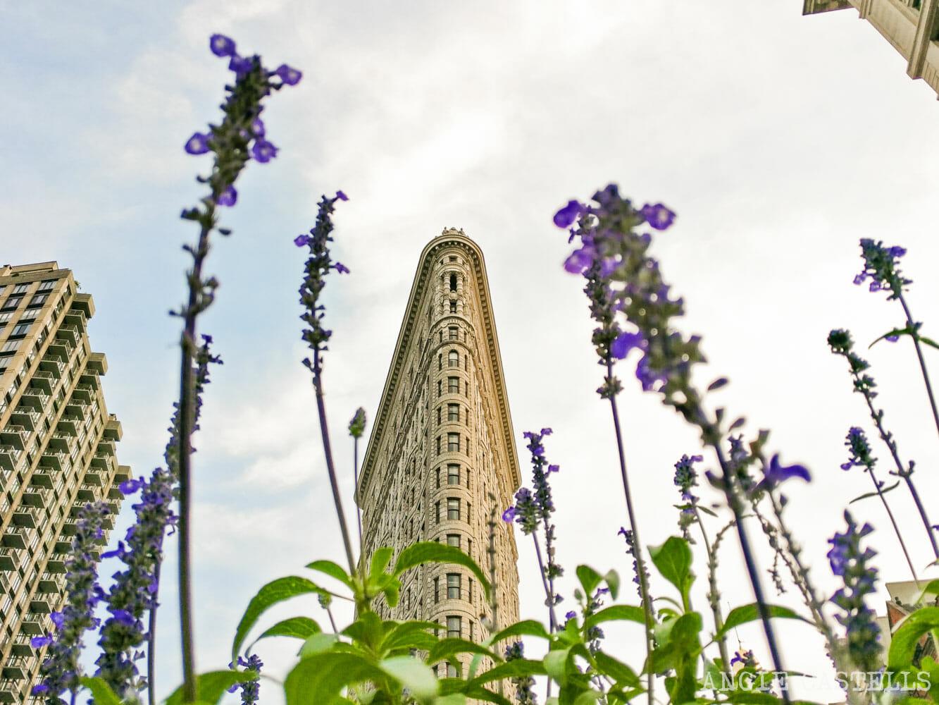 El mes & # 39; en junio en Nueva York - Edificio Flatiron