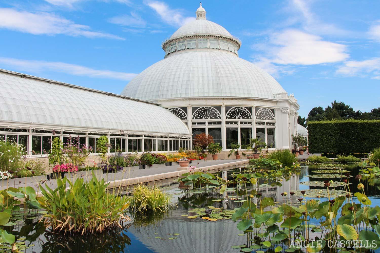 Visita Jardín Botánico & # 39; Nueva York Bronx