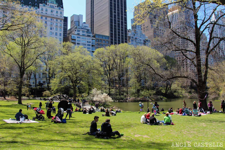 Primavera en Nueva York para hacer Central Park