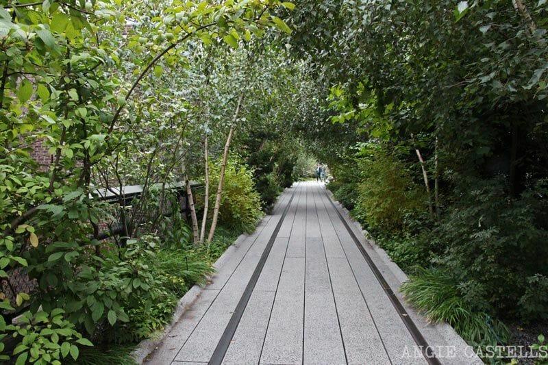 Nueva York Naturaleza alta de línea