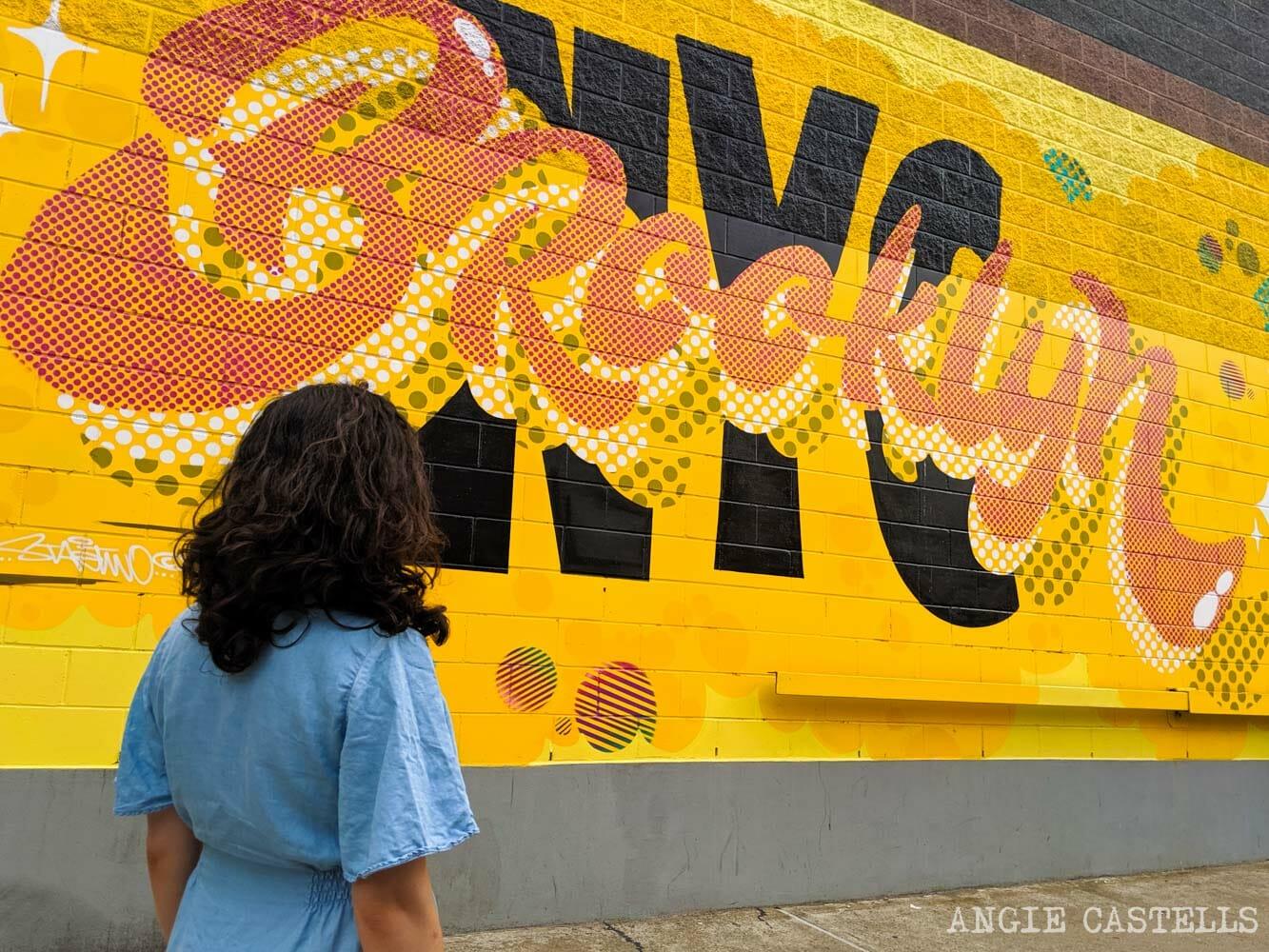 cosas que se aprenden al vivir en Nueva York - Brooklyn
