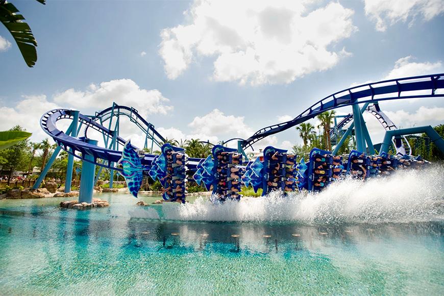Manta descansa un ala en SeaWorld Orlando