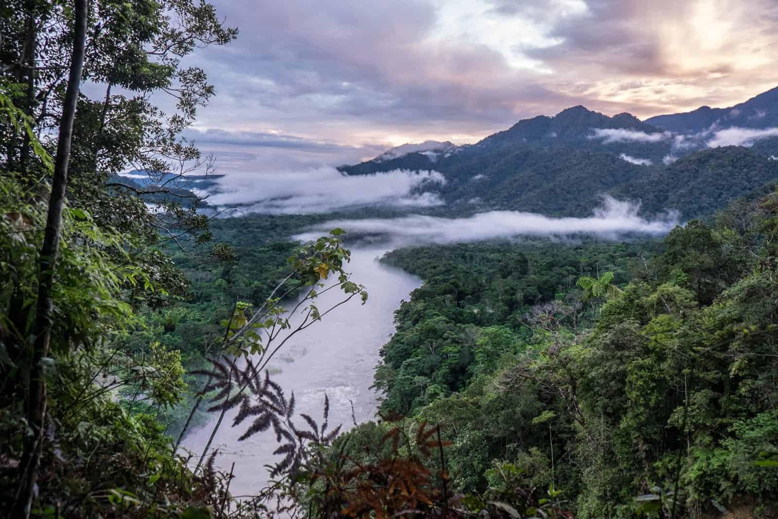 La selva y el paisaje fluvial de la selva amazónica ecuatoriana